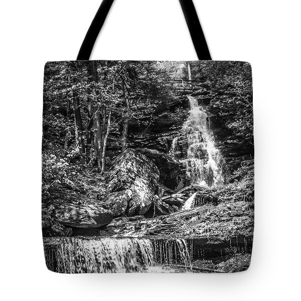 Tote Bag featuring the photograph Adams Falls - 8867 by G L Sarti