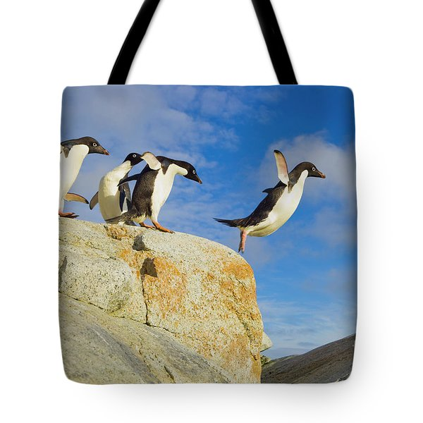 Adelie Penguins Jumping Tote Bag