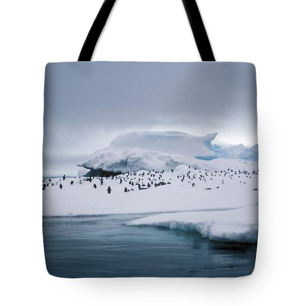 Adelie Penguins On Iceberg Weddell Sea Tote Bag