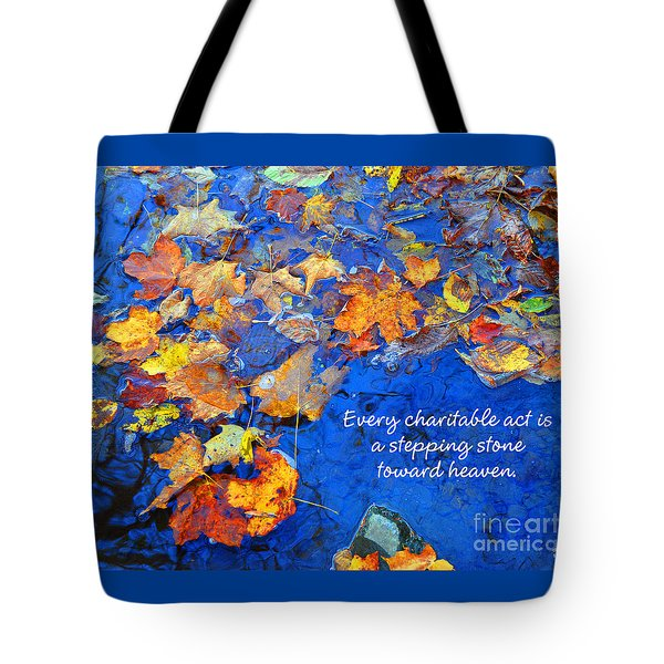 Adironack Laughing Water Charity Tote Bag by Diane E Berry