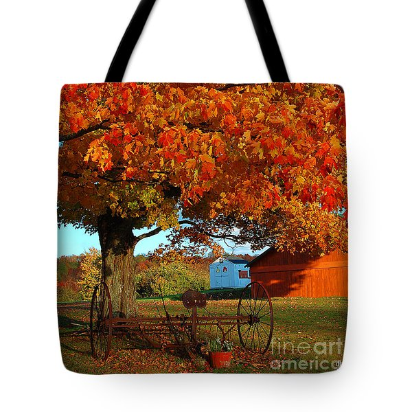 Adirondack Autumn Color Tote Bag by Diane E Berry