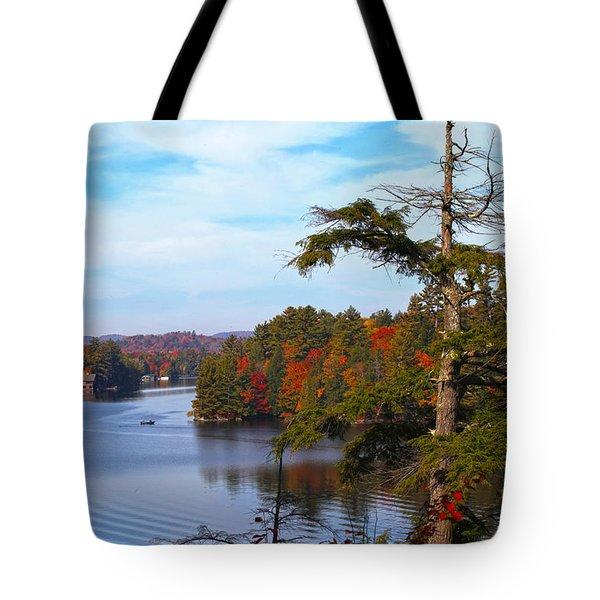 Adirondack View Tote Bag