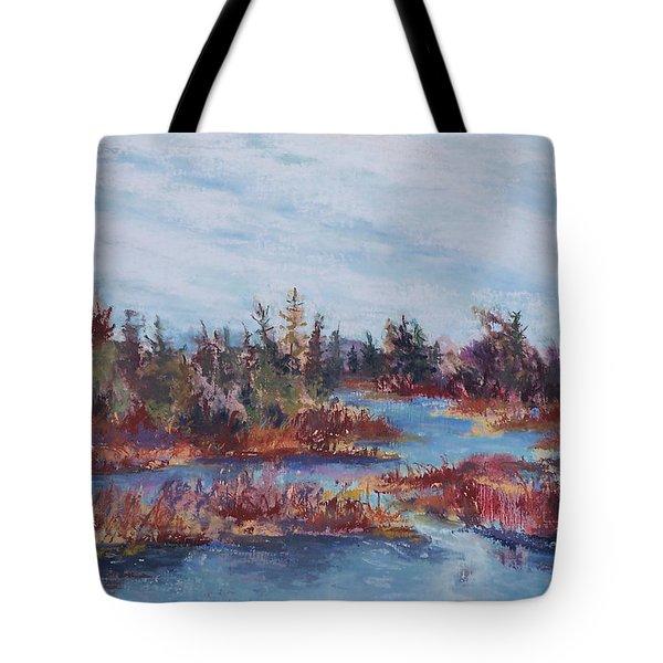 Adirondak Concerto Tote Bag by Alicia Drakiotes