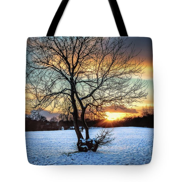 Admiring The Sunet Tote Bag