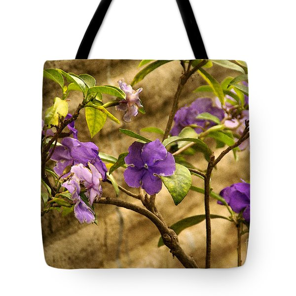 Tote Bag featuring the photograph Adobe Garden Wall by Linda Shafer