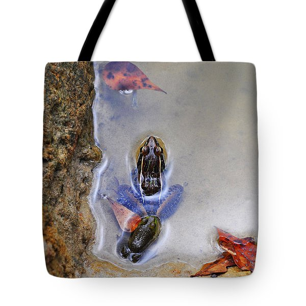 Tote Bag featuring the photograph Adopted Amphibian by Al Powell Photography USA