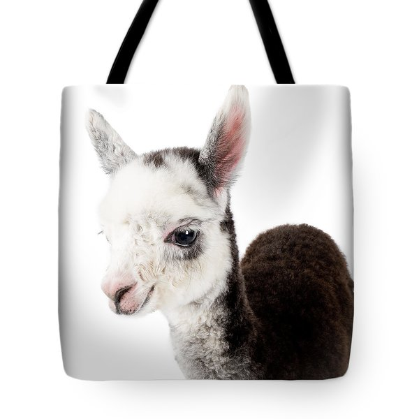 Adorable Baby Alpaca Cuteness Tote Bag by TC Morgan