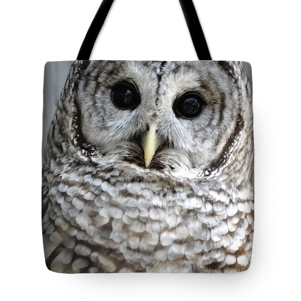 Adorable Barred Owl  Tote Bag by Rebecca Overton