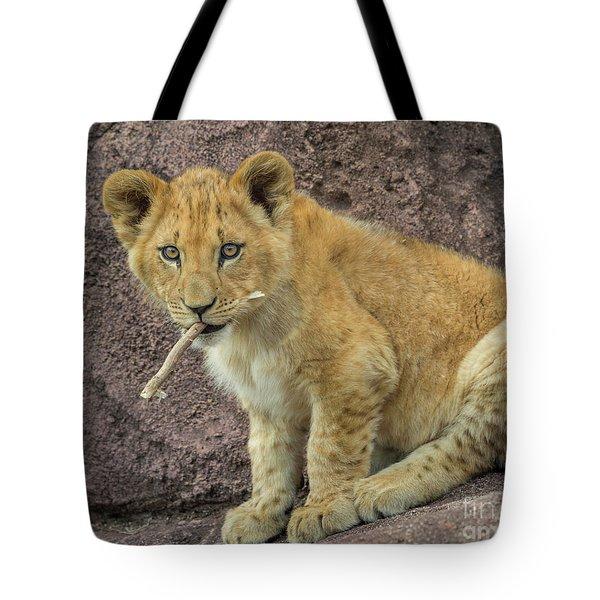 Adorable Lion Cub Tote Bag