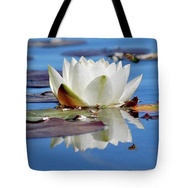 Tote Bag featuring the photograph Adoring White by Amee Cave