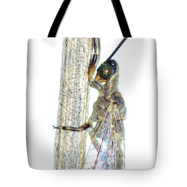 Adult Ant Lion Tote Bag