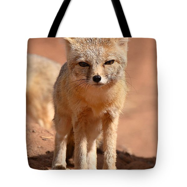 Tote Bag featuring the photograph Adult Kit Fox Ears And All by Max Allen