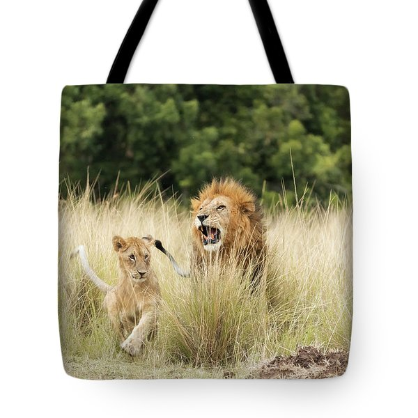 Adult Lion And Cub In The Masai Mara Tote Bag
