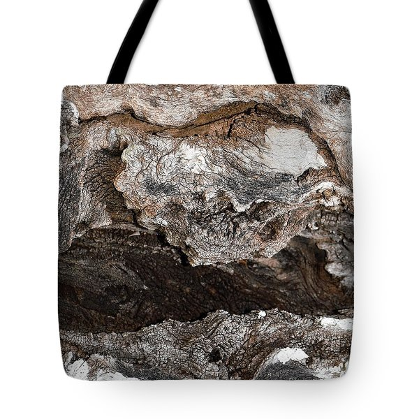 Tote Bag featuring the photograph Adventure by Ray Shrewsberry