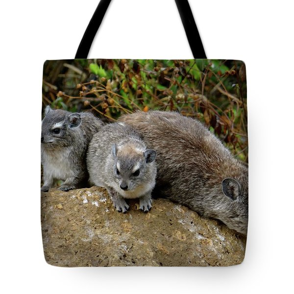 African Animals On Safari - A Child's View 4 Tote Bag