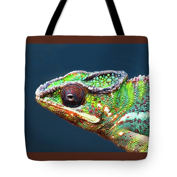 Tote Bag featuring the photograph African Chameleon by Richard Goldman