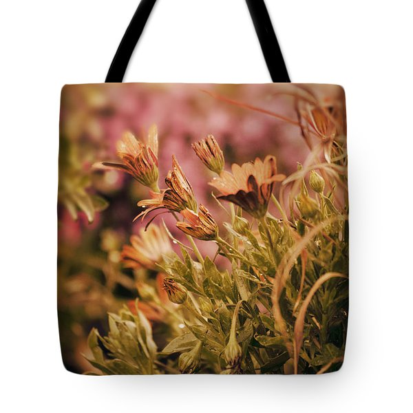 African Daisies  Tote Bag
