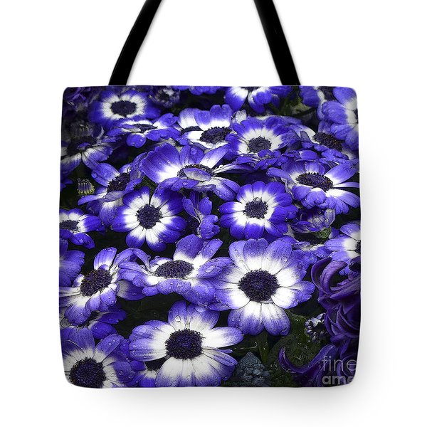 African Daisy Purple And White Tote Bag