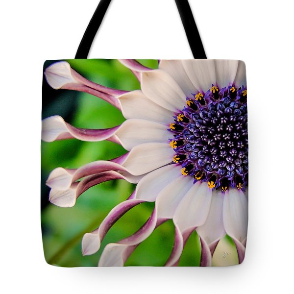 African Daisy Squared Tote Bag by TK Goforth