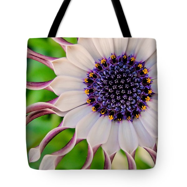 African Daisy Tote Bag by TK Goforth