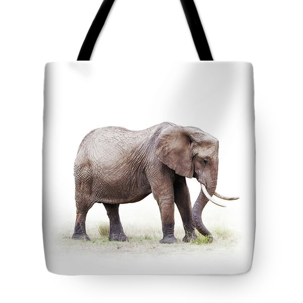 African Elephant Grazing - Isolated On White Tote Bag