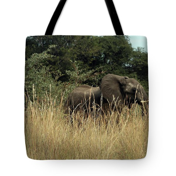 African Elephant In Tall Grass Tote Bag