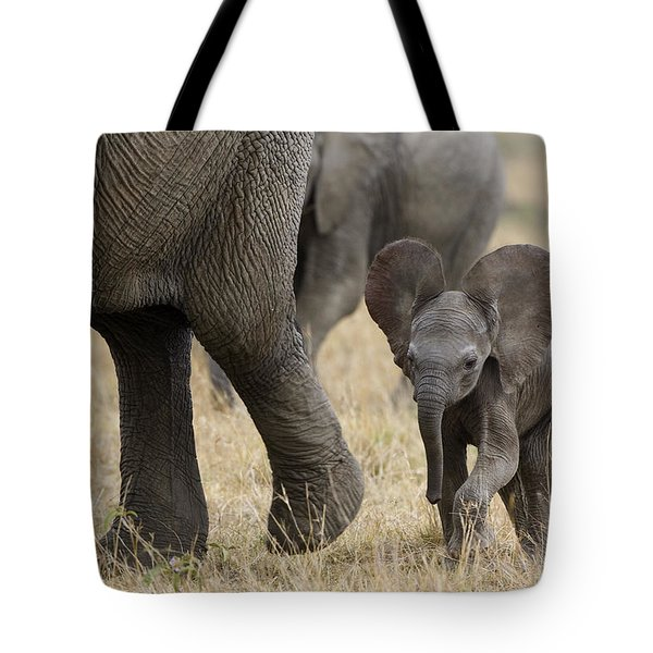 African Elephant Mother And Under 3 Tote Bag