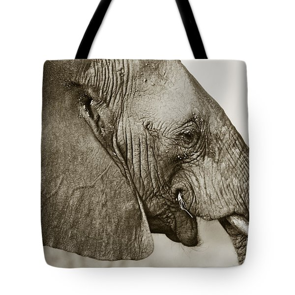 African Elephant Profile  Duotoned Tote Bag
