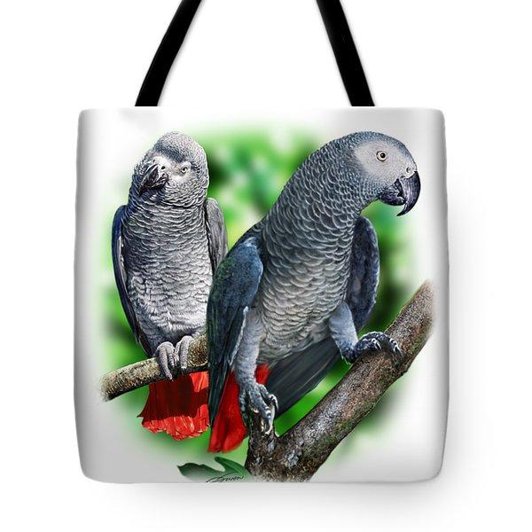 African Grey Parrots A Digital Art By Owen Bell