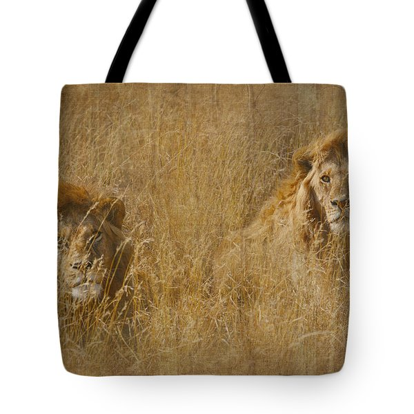 African Lion Brothers Tote Bag
