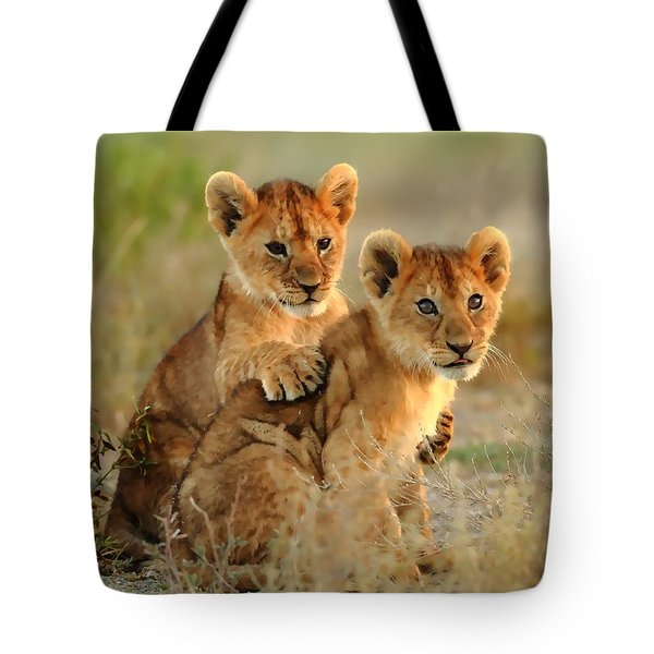 African Lion Cubs Tote Bag by Maciek Froncisz