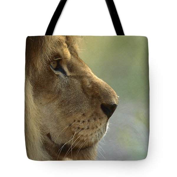 African Lion Panthera Leo Male Portrait Tote Bag by Zssd