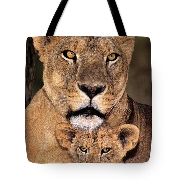 Tote Bag featuring the photograph African Lions Parenthood Wildlife Rescue by Dave Welling