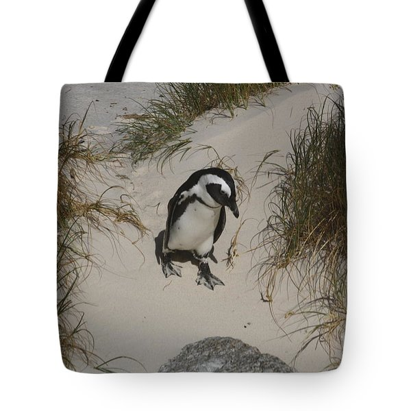 African Penguin On A Mission Tote Bag by Bev Conover