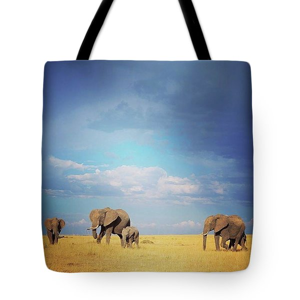 African Perfection Tote Bag by Happy Home Artistry