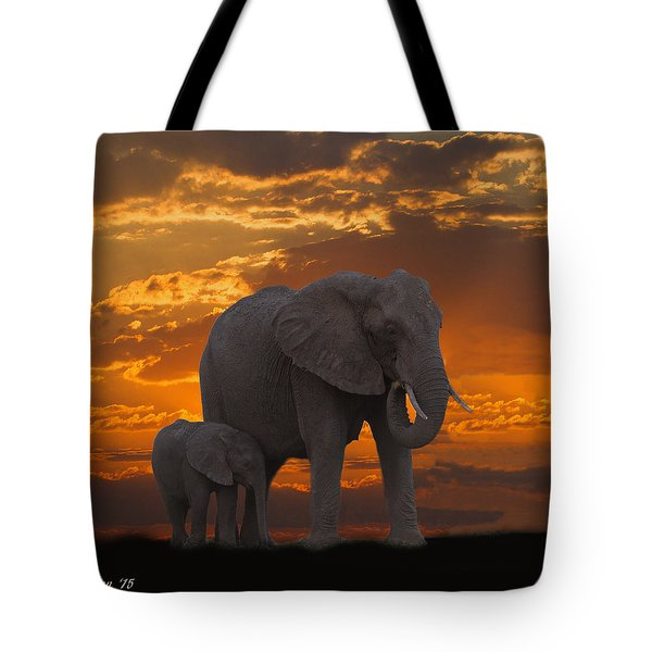 African Sunset-k Tote Bag