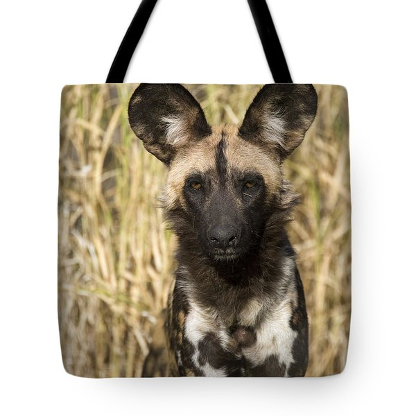 Tote Bag featuring the photograph African Wild Dog Okavango Delta Botswana by Suzi Eszterhas