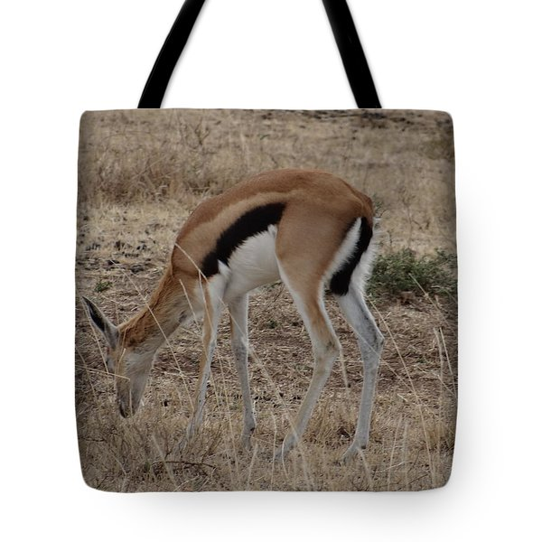 African Wildlife 4 Tote Bag