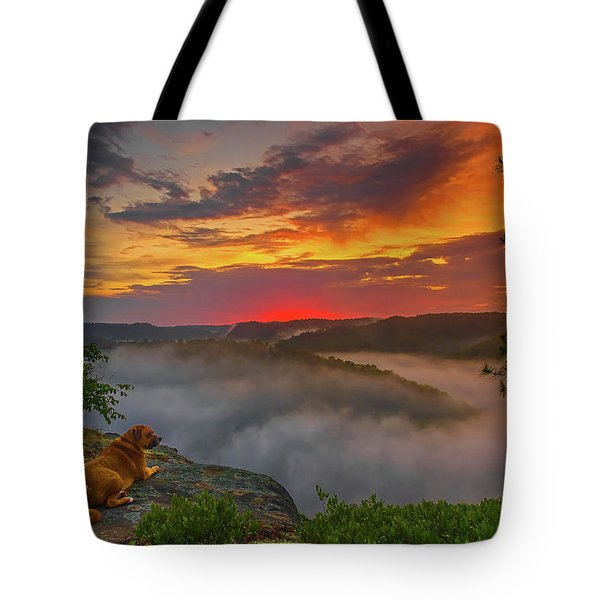 After A Rainy Night.... Tote Bag by Ulrich Burkhalter
