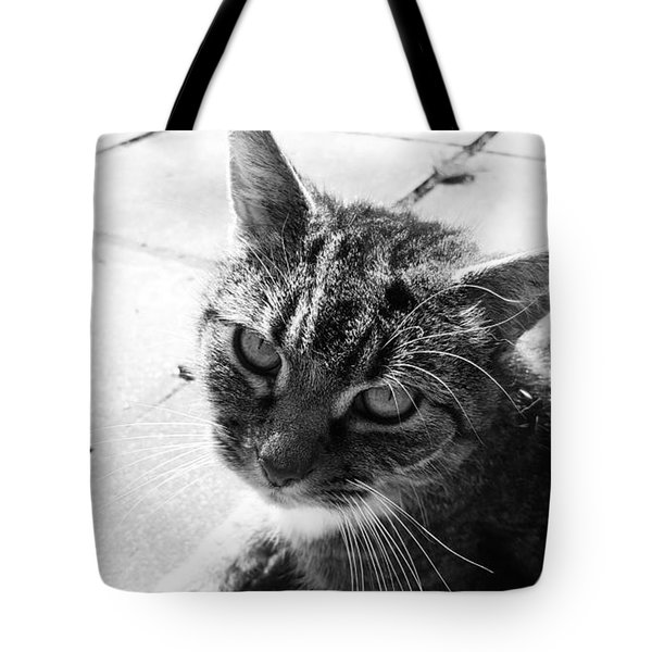 After Lunch Tote Bag