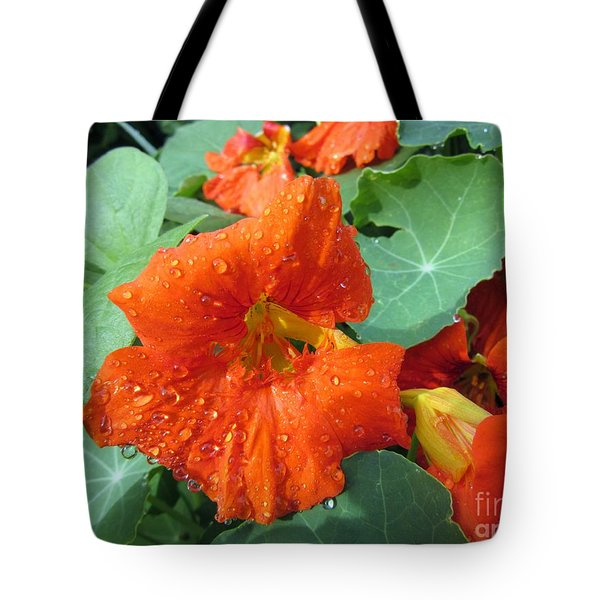 After Rain Tote Bag