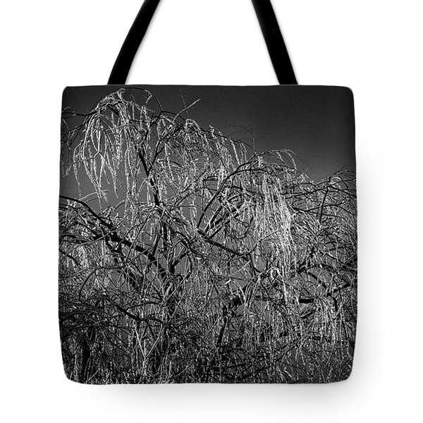 After The Ice Storm Tote Bag