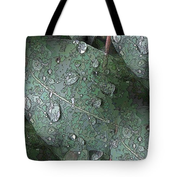 After The Rain 4 Tote Bag by Tim Allen