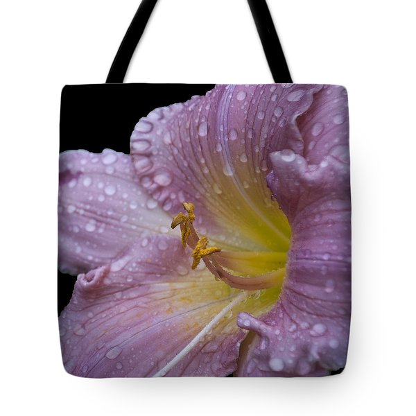 After The Rain Tote Bag by Deborah Klubertanz