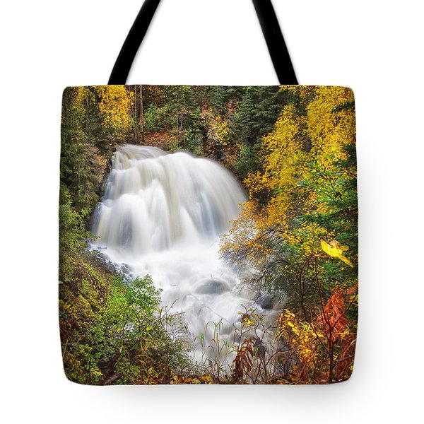 After The Rain Tote Bag by Ed Boudreau