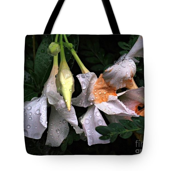 After The Rain - Flower Photography Tote Bag by Miriam Danar