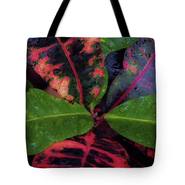 After The Rain Has Fallen Tote Bag