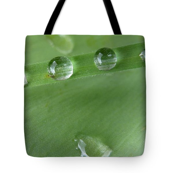 Tote Bag featuring the photograph After The Rain by Jean Bernard Roussilhe