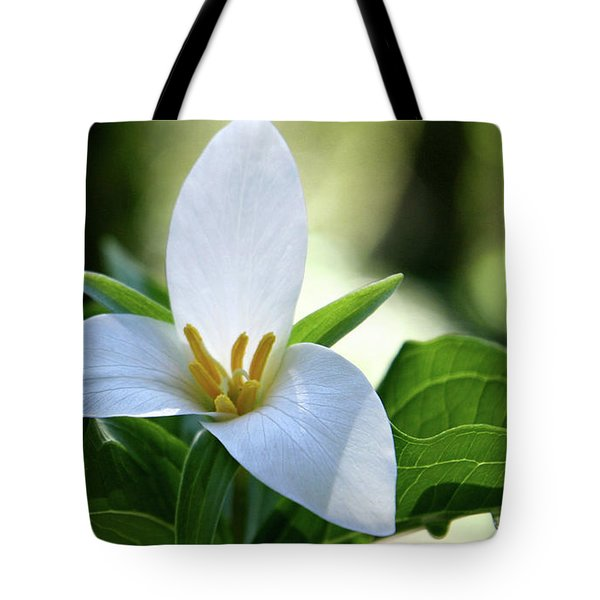 After The Rain Tote Bag by Sheila Ping