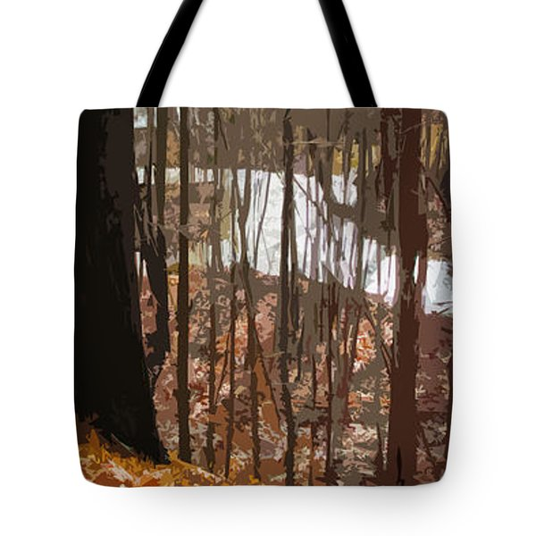After The Rain Tote Bag by Spyder Webb